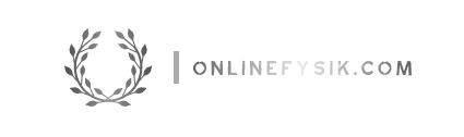 onlinefysik.com